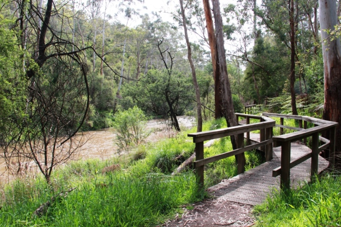 Walking path along the Yarra