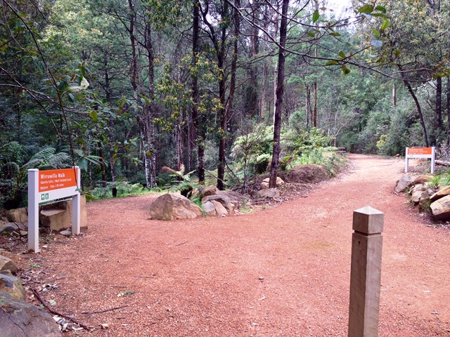 Signage - left for Wirrawilla Walk and right for the Tanglefoot Track
